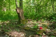 Zarośnięty cmentarz