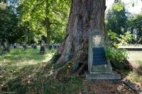 Cmentarz w Cybince