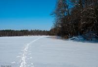 Jezioro Jełguń
