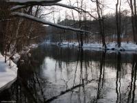 Łyna w Rusi