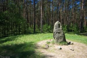Kamienny krąg koło Leśna