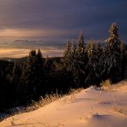 Zimowy widok na Tatry z Lubania