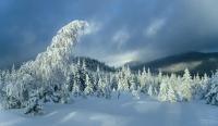 Góry Harghita zimą
