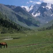 Góry Tien-Szan